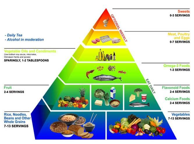دانلود پاورپوینت تغذیه و تغذیه ورزشی